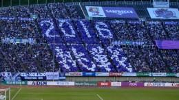 広島対横浜Fキックオフ前(2016年7月17日 エディオンスタジアム広島)